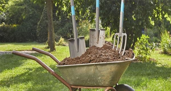 5 outils incontournables di jardinage